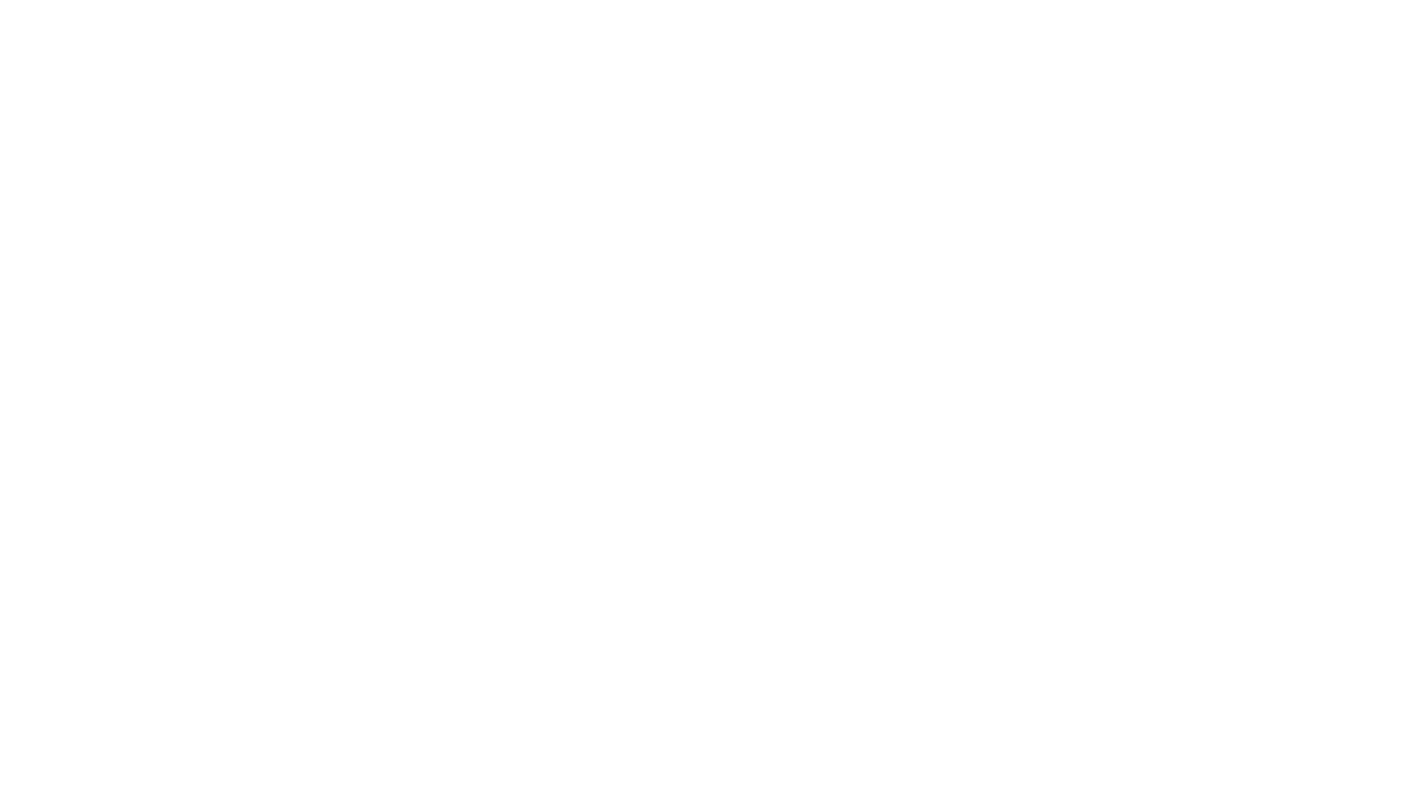 logo Frame blanc